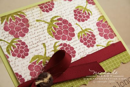 Raspberry paper