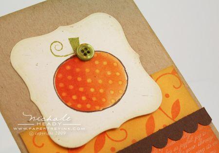 Polka dot pumpkin closeup