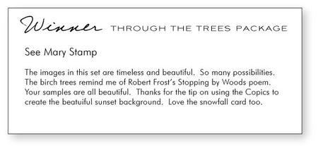 Through-the-trees-winner