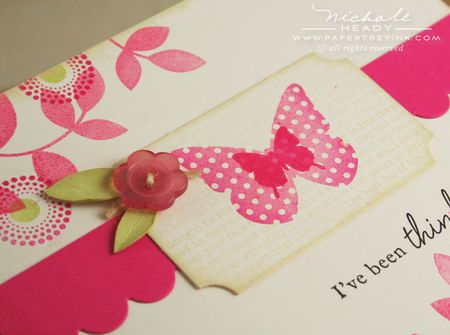 Button flower closeup