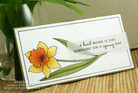 Colored daffodil card