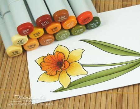 Daffodil copics