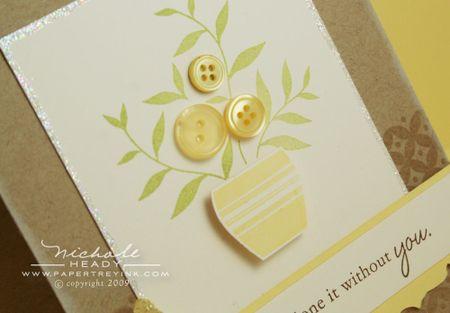 Button plant closeup