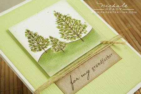 Green tree closeup