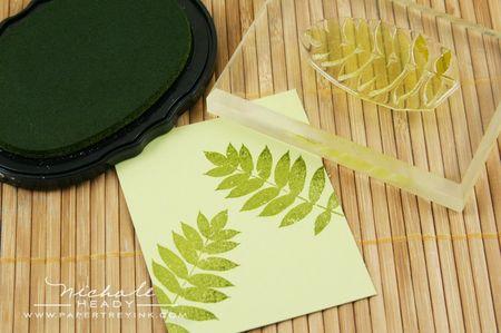 Stamped ferns
