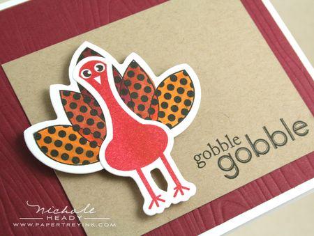 Turkey closeup
