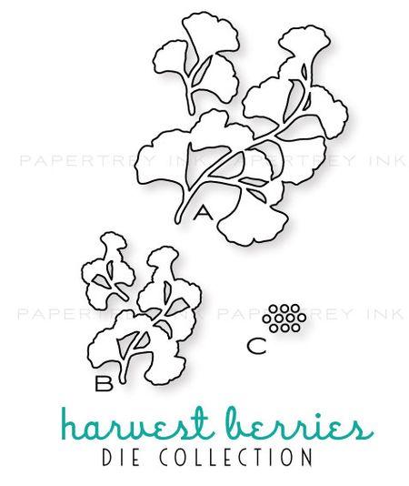 Harvest-berries-dies