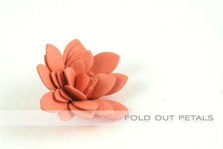 Fold out petals