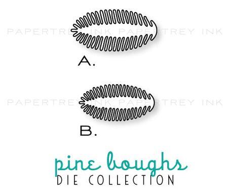 Pine-boughs-dies