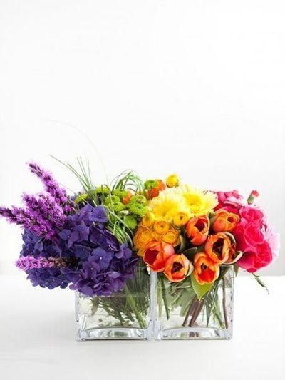Flower color blast