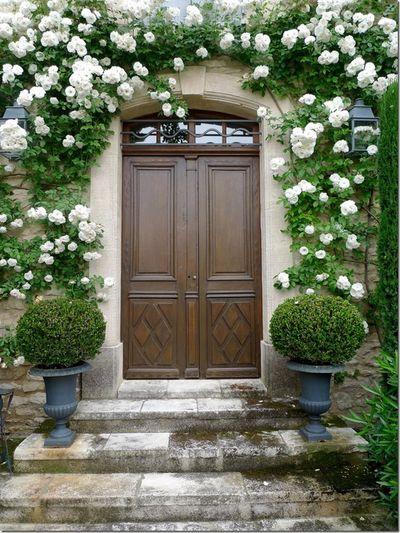 Roses door