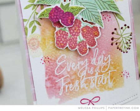 Ptisberries9