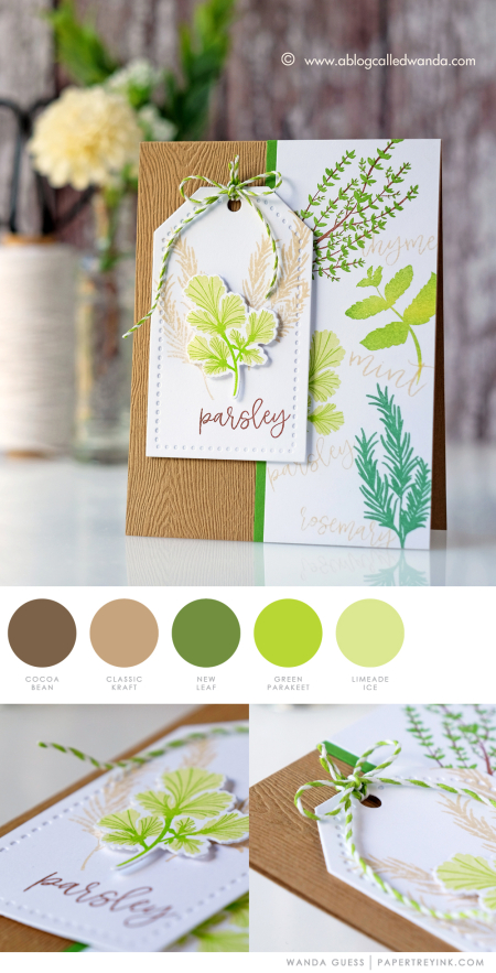Herb Garden by Wanda Guess for Papertrey Ink