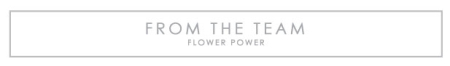 TEAMFLOWERPOWER-TITLE