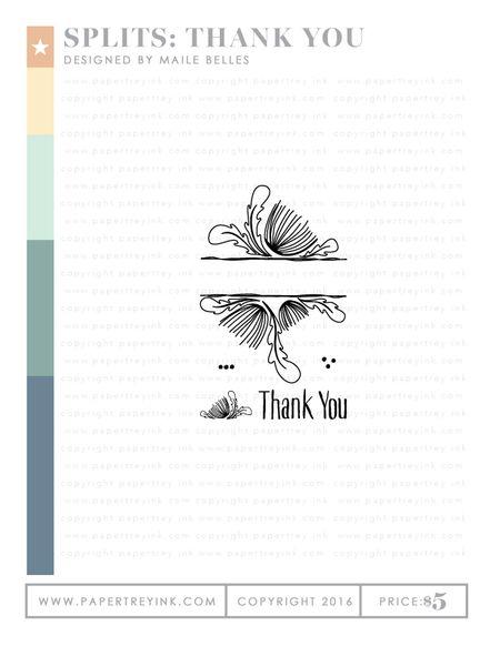 Splits-Thank-You-Webview