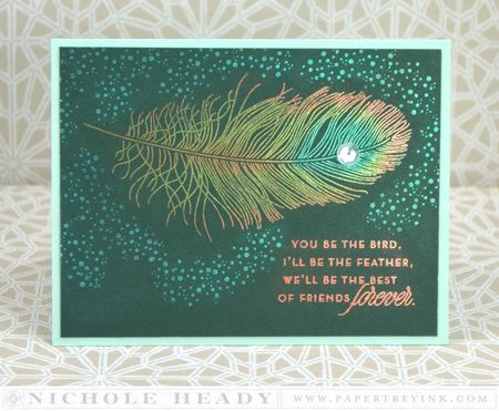 Feather Finery - Nichole