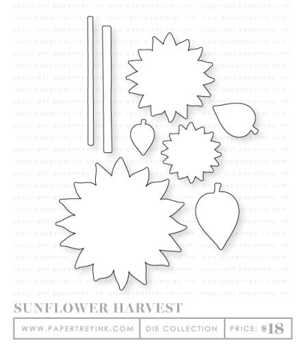 Sunflower-harvest-dies