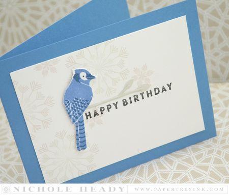 Bluebird down