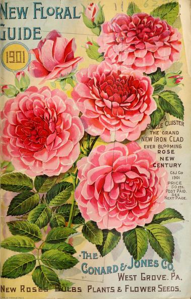 Newfloralguide191901cona_0003