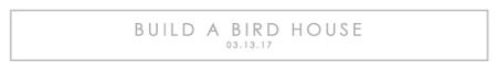 Build-a-Bird-House-title
