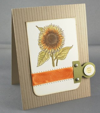 042207_sunflower_2