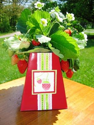 051607_strawberries