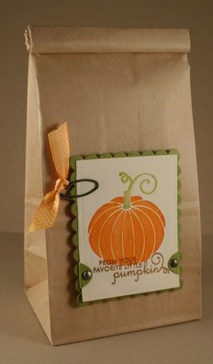 081007_pumpkin_bag