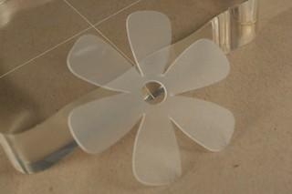 081107_transparent_flower
