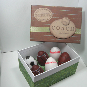 Coach_egg_box_2