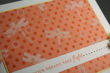 Dreams_take_flight
