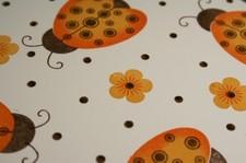 Ladybugs_closeup