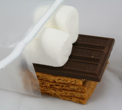 Contents_of_smores_kit