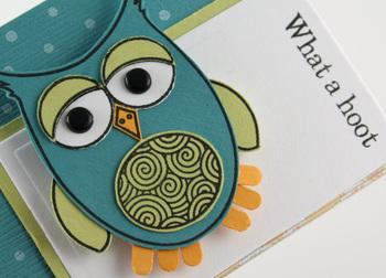 Owl_closeup